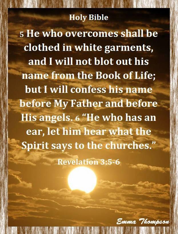 Read Revelation 3:12 Using Other Translations