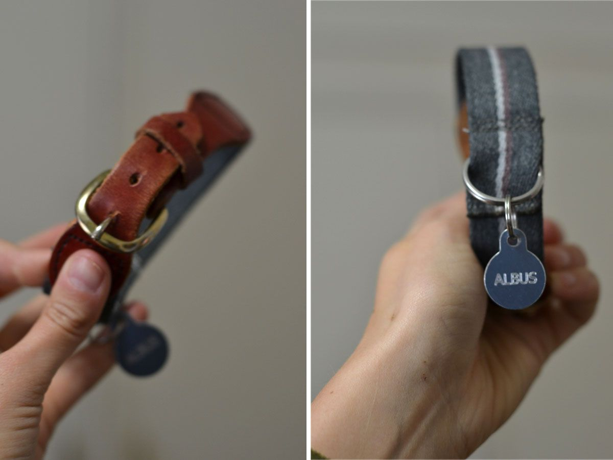 DIY dog collar out of an old belt