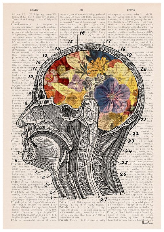 Flowery Brain Poster Anatomical Art Wall Art Anatomy Giclee