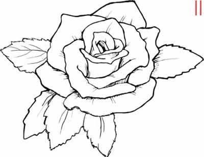 Yeni Gül Boyama Resimleri çiçek Boyama Resimleri Kıyafet