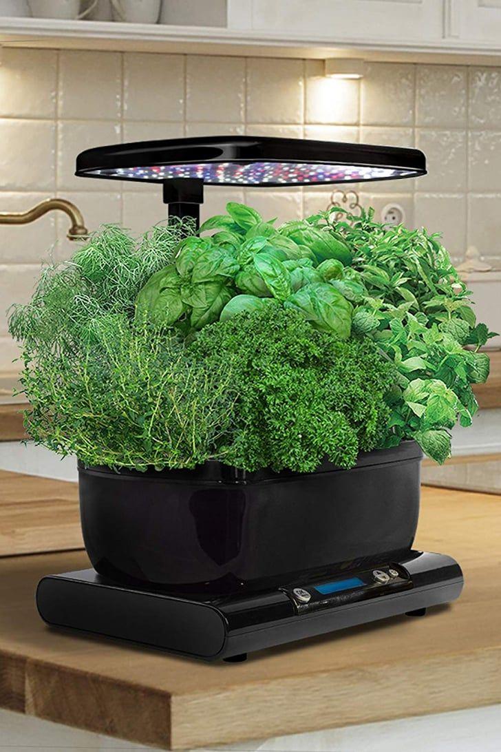 Everyone Is Buying This Genius Indoor Garden Grower, and