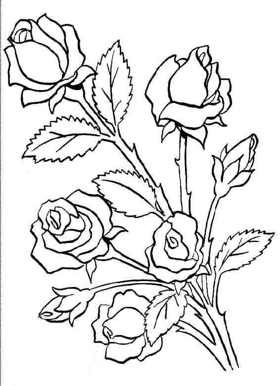 Открытки с контурным рисунком