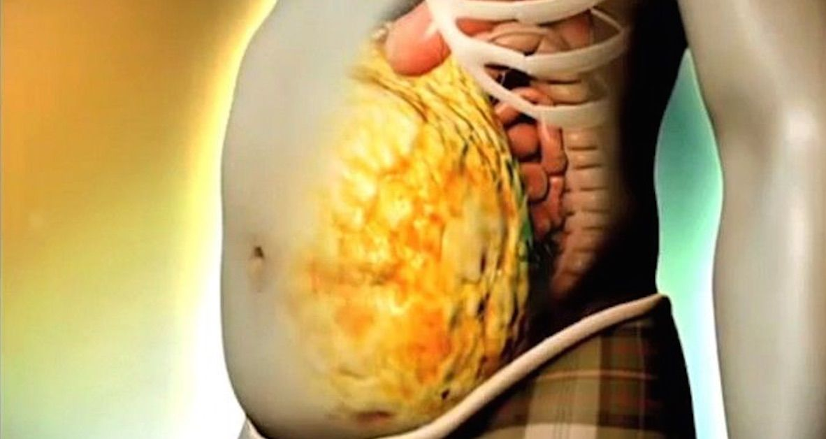 vitamina che brucia il grasso della pancia