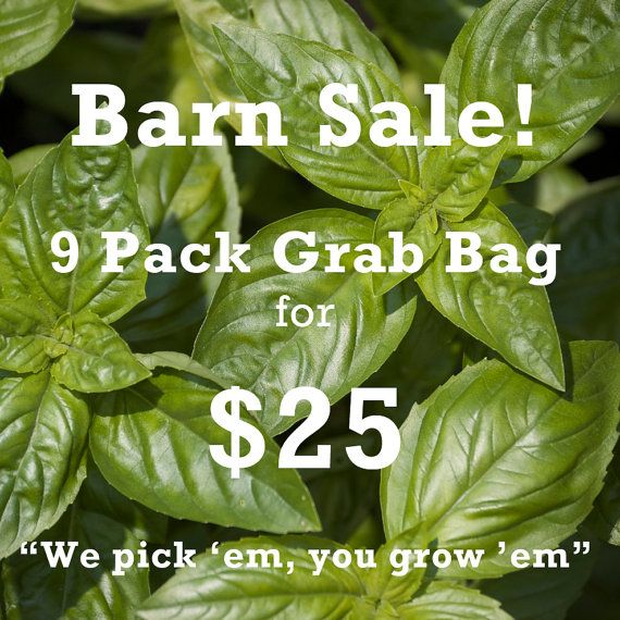 6 more days of our BARN SALE! 9 packs of Herbs Assorted Organic Seeds for only $25.00 from www.cubitsorganics.com