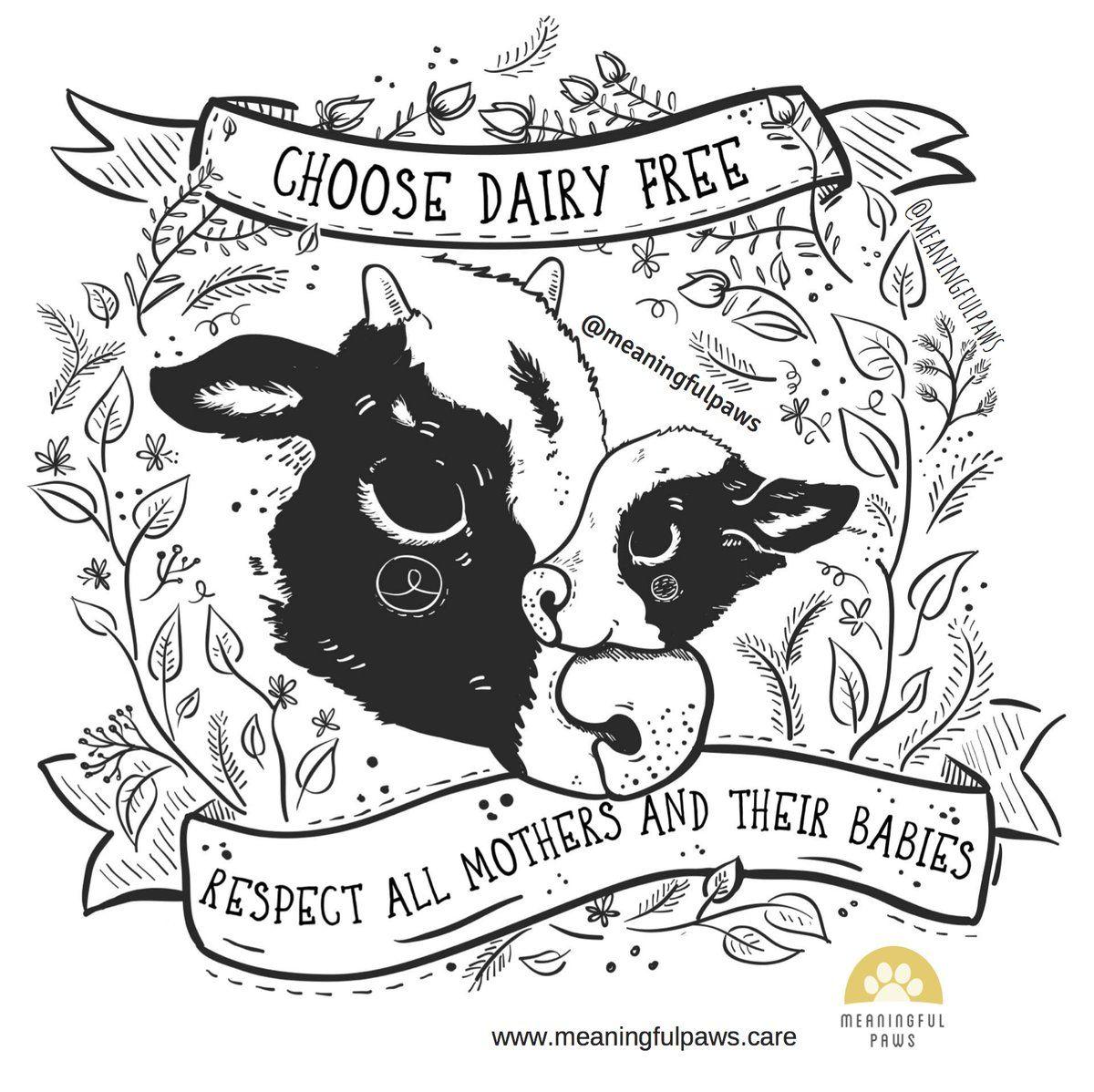 Vegan Cerca Su Twitter Veggie Art Animal Quotes Animal Drawings