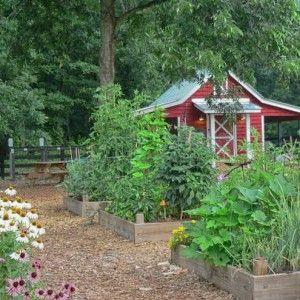green meadows preserve community garden in marietta georgia provides public access community gardening for cobb residents - Garden Sheds Marietta Ga