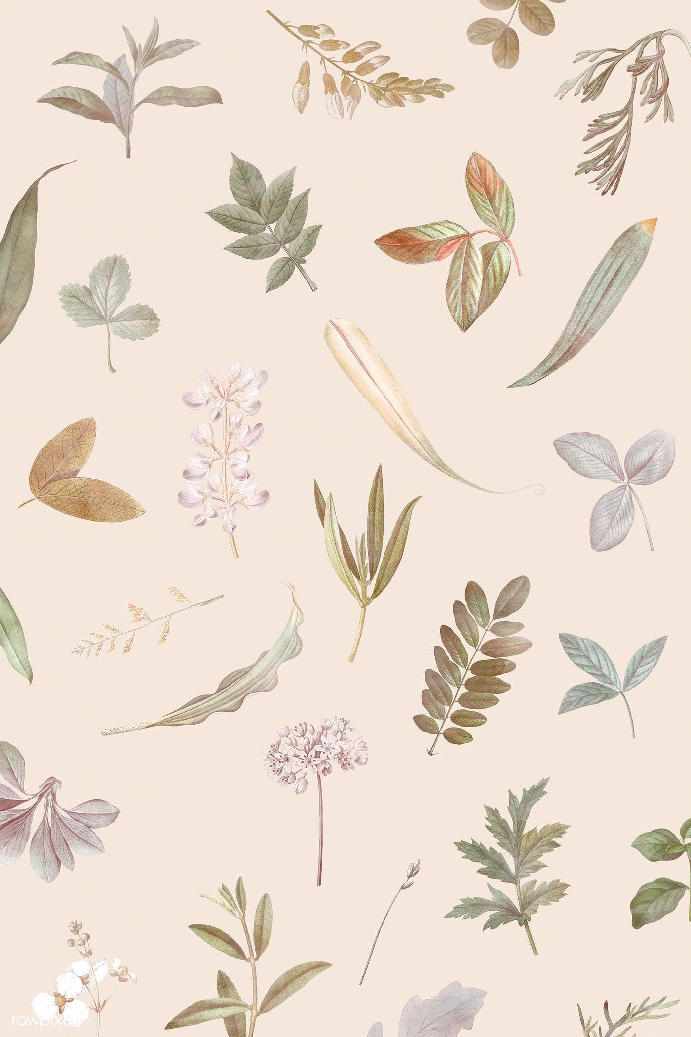 Download premium vector of Foliage pattern on beige background vector