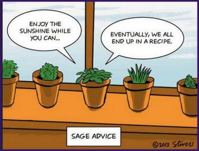 Pun Sage Advice The Perfect Pun For Pinterest