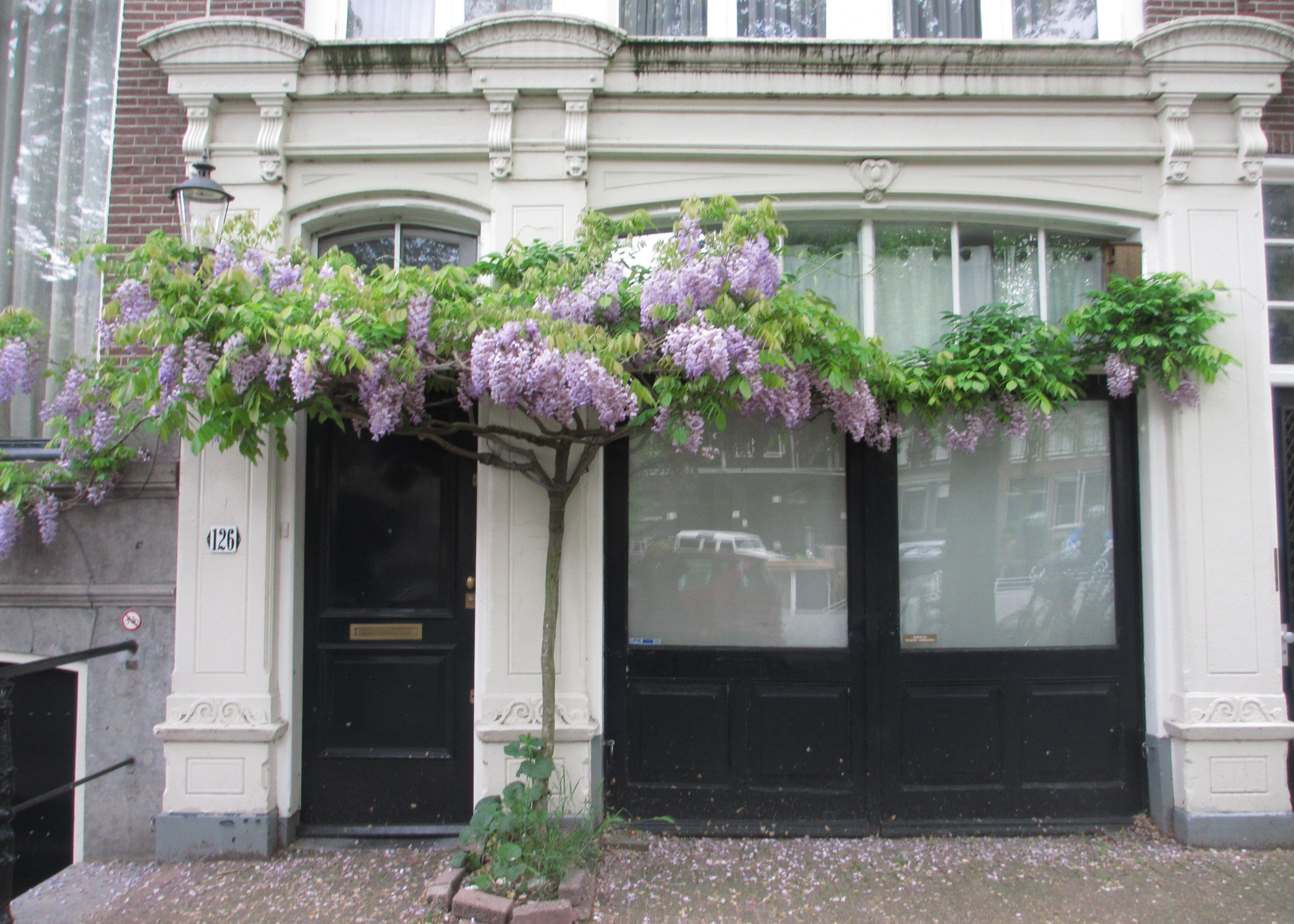 Holland & Magical Doors in Amsterdam | Holland | Pinterest | Amsterdam ... pezcame.com
