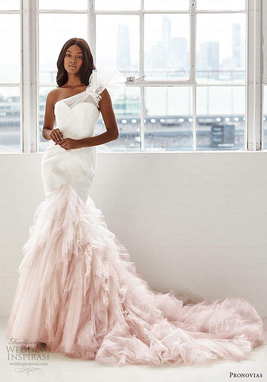 Ashley Graham x Pronovias 2020 Brautkleider – Eine wunderschöne neue Brautkollektion in Größe   Hochzeit Inspirasi