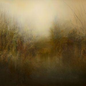 MAURICE SAPIRO Тени и туман