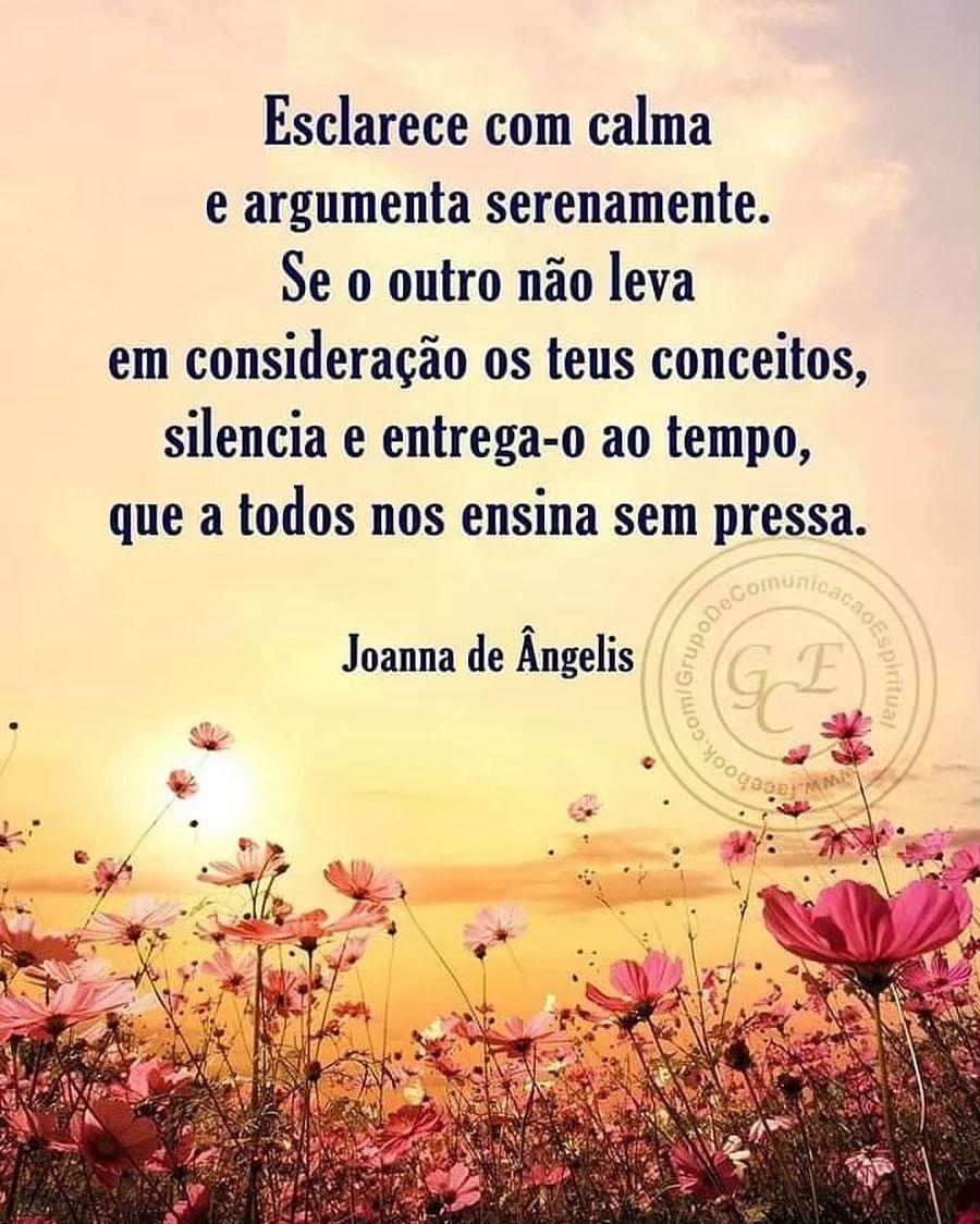 Espiritismo Mensagens Reflexivas Joana De ângelis Frases