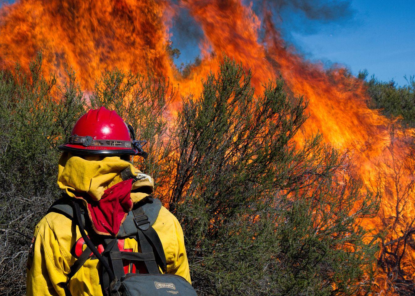 03.19.2014 Isabel Valley Prescribed Burn Wildland