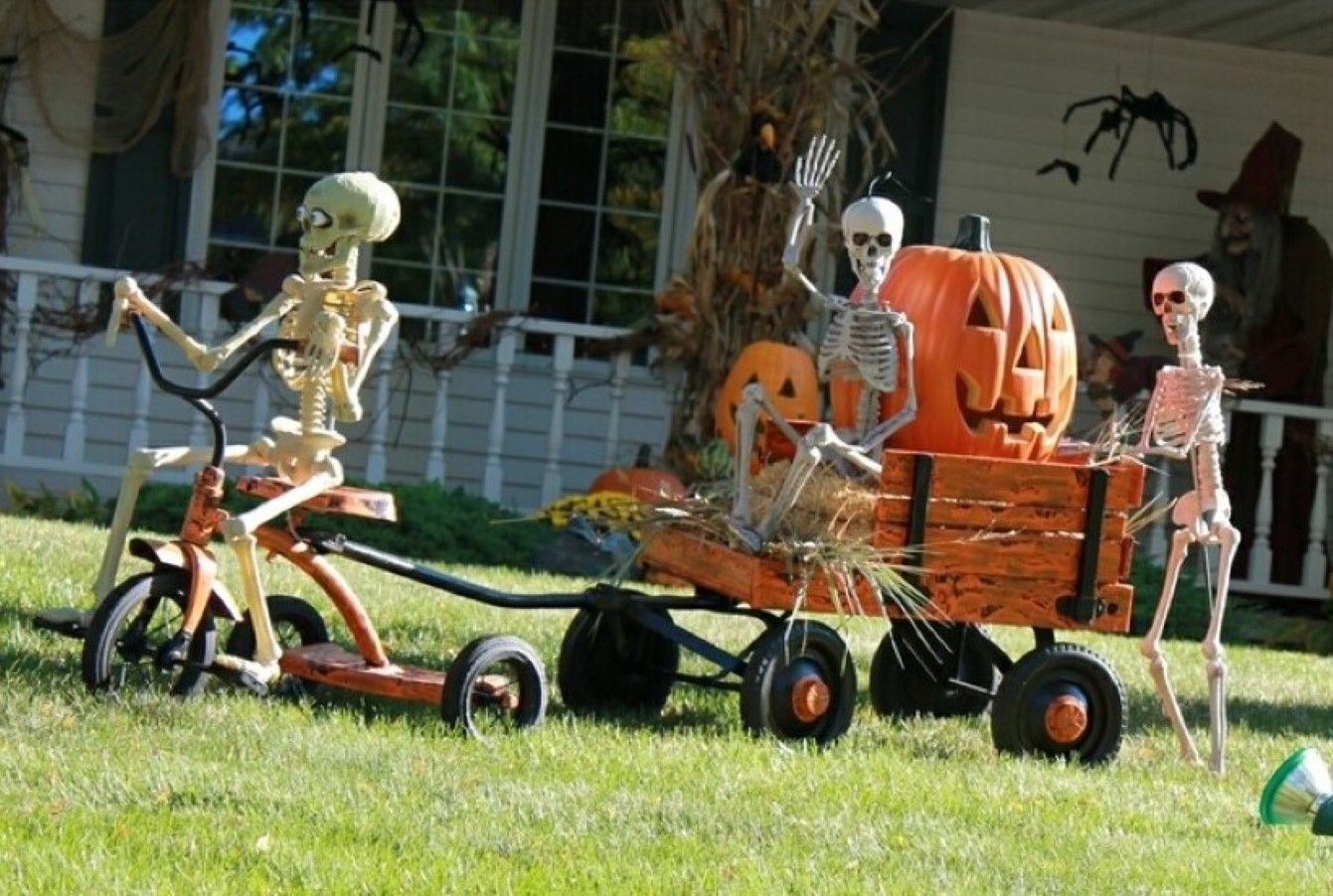 ideas for halloween decorating - Google Search Halloween - Halloween Yard Decorations