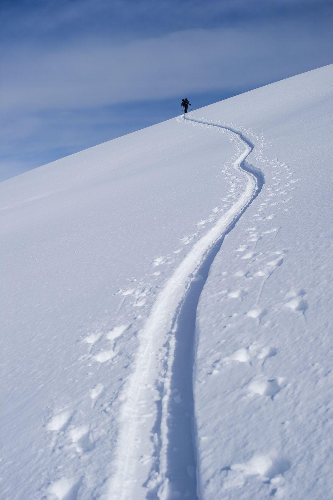 snow trail - Zoya Lynch - Amiskwi Lodge, Canadian Rockies | Photo by Bruno Long