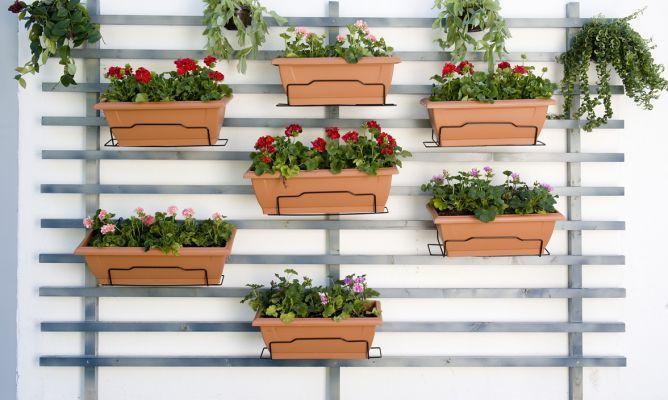 Jardín vertical para no ocupar mucho espacio Decoración - jardineras verticales