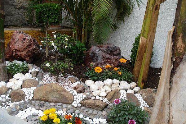 Plantas ideas para un jard n sin pasto jardin seco - Ideas para jardines rusticos ...