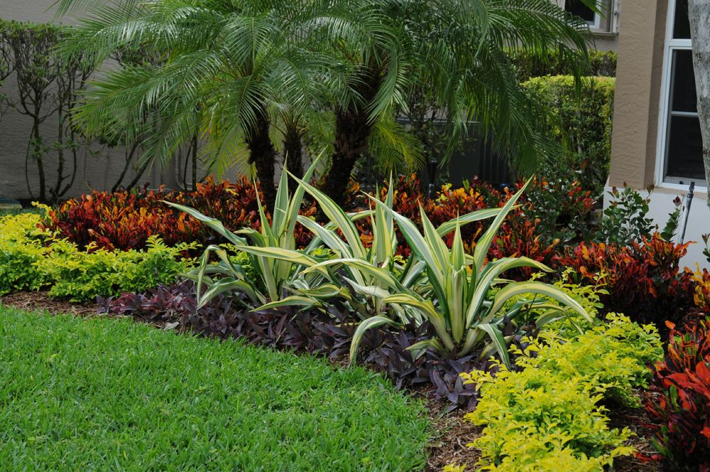 'Curb Appeal in Boca Raton Landscape Design' by   Tropical ...