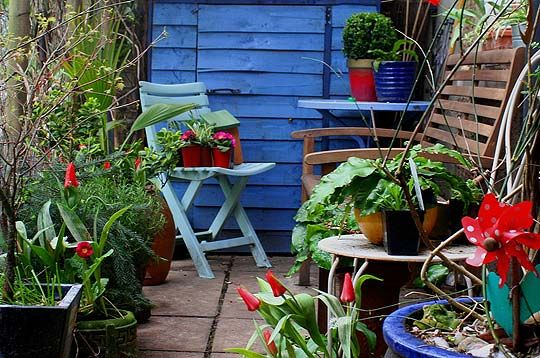 Flickr Find Small Patio Bold Color Home Sweet Home Small