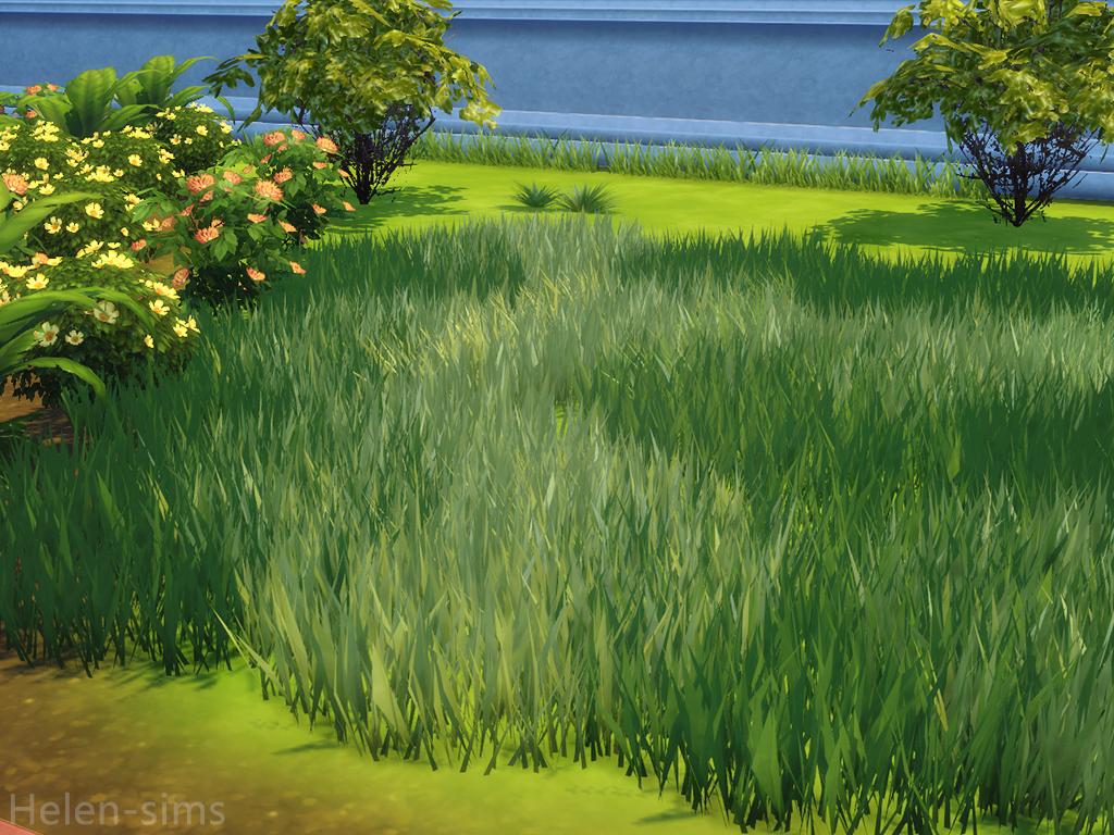 Ts4 Tall Grass Sims 4 Sims Grass