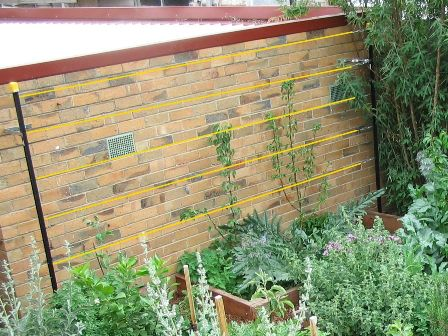 Building an espalier support against a brick wall. | Glorious ...