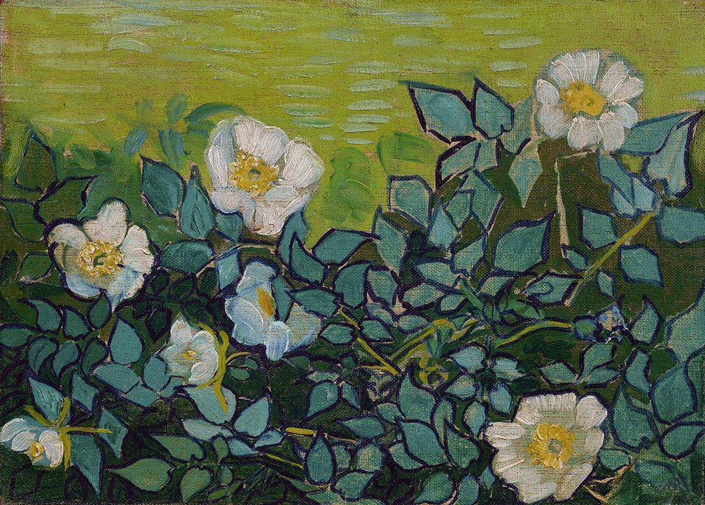 Wild Roses by Vincent van Gogh