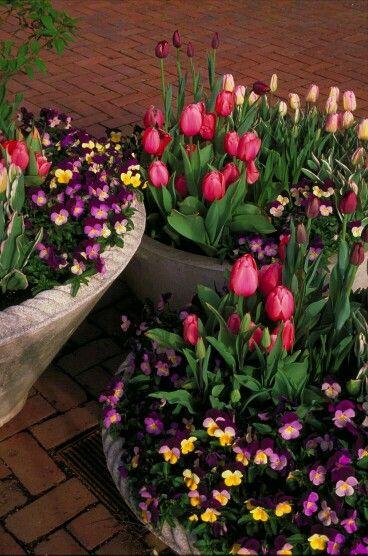 13+ Vasque jardin pour fleurs ideas in 2021