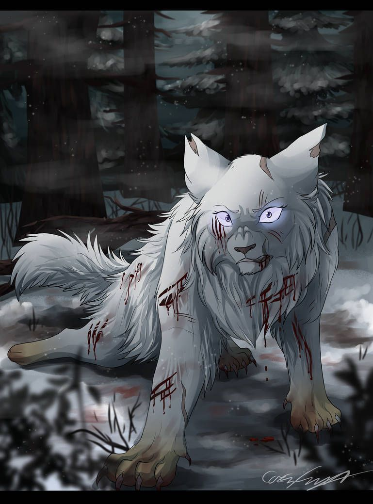 Coldrise by CascadingSerenity | Cool | Warrior cat drawings