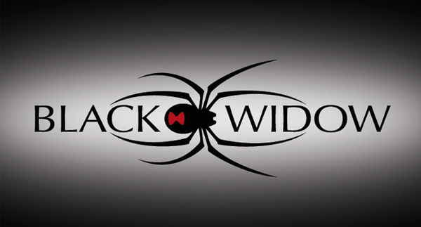 Black Widow New Logo Free Images At Clker Com Vector Clip Art Online Royalty Free Public Domain Black Widow Black Widow Spider Black Widow Symbol