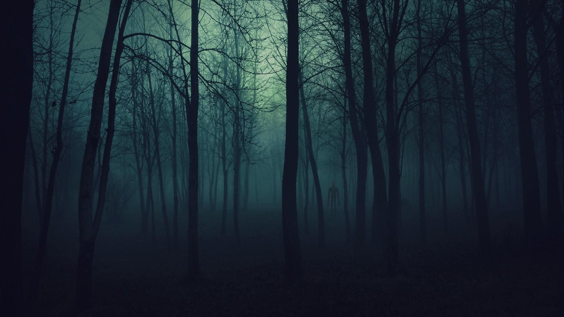 Http Slender Men Blogspot Com Slenderman Slender Creepy Scary Monster Creature Woods Crazy Dark Wood Background Forest Wallpaper Scary Backgrounds