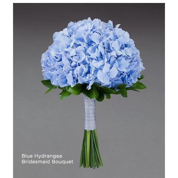 Blue Hydrangea Wedding Flowers: Blue Hydrangea Bouquet Wedding