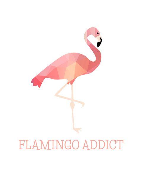 Risultati immagini per flamingo addict