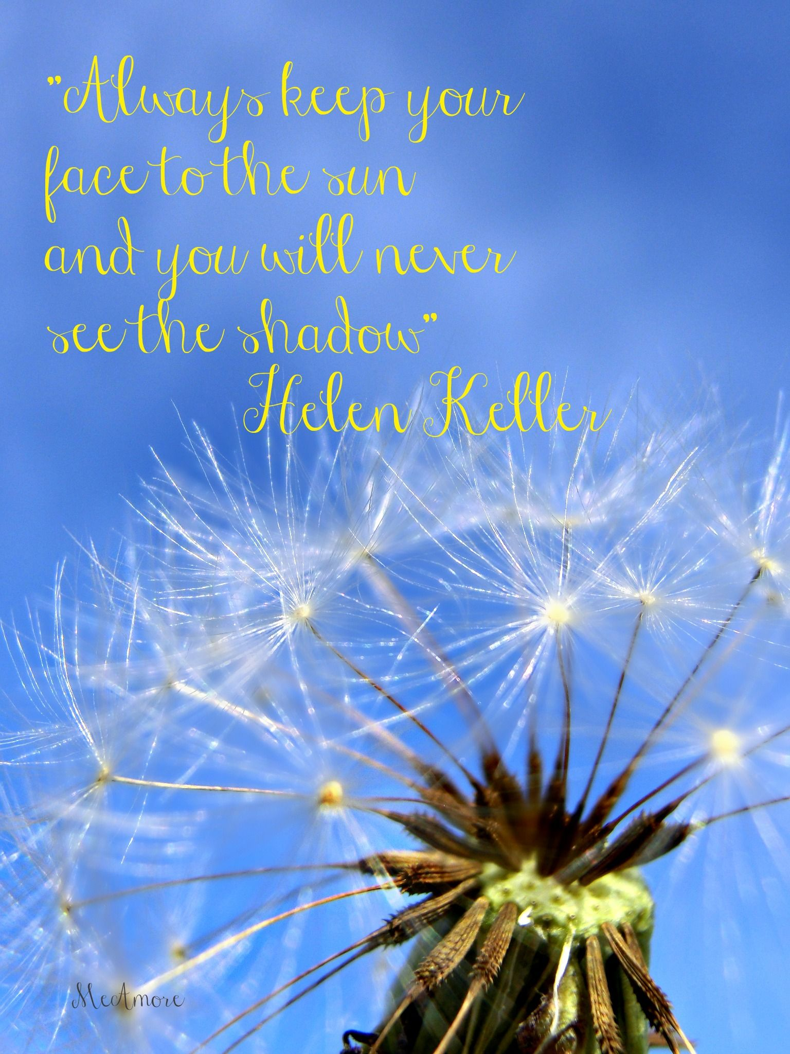 """""""Always keep your face to the sun  and you'll never see the shadow"""""""