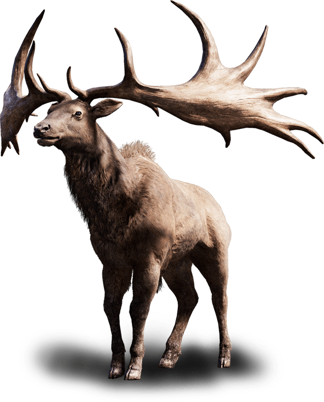 beast far cry primal animals
