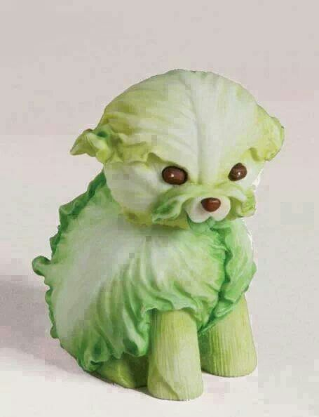 Creative food Art! Dog made out of lettuce