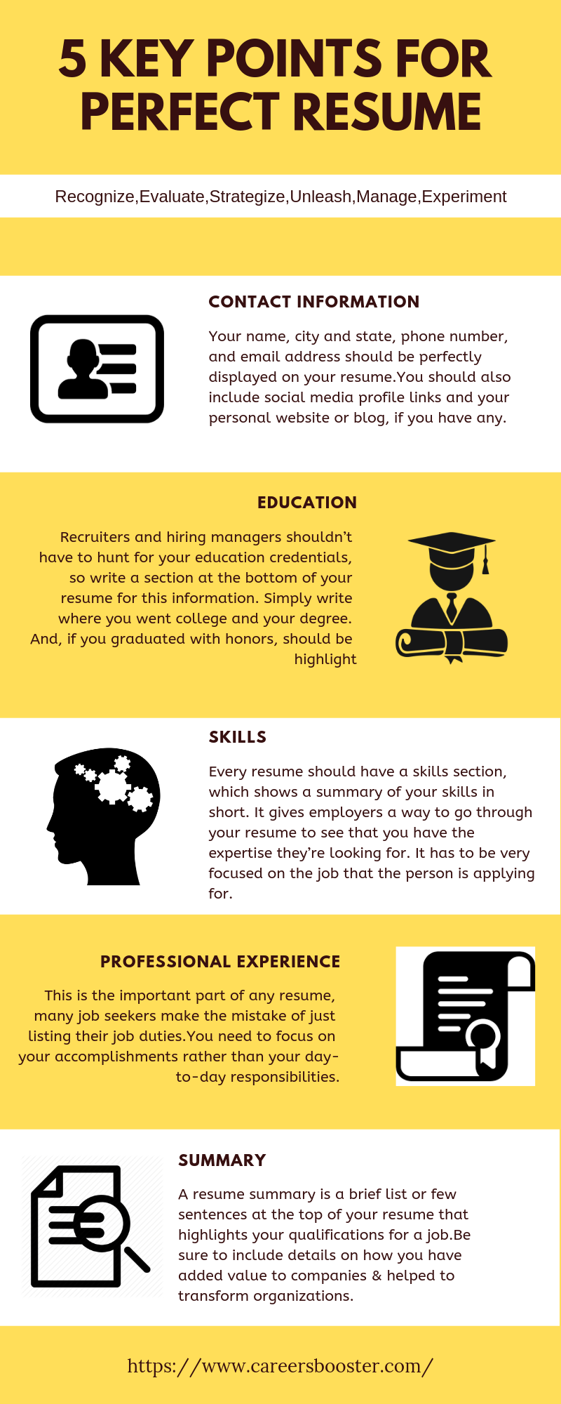 5 KEY POINTS FOR PERFECT RESUME Resume writing services