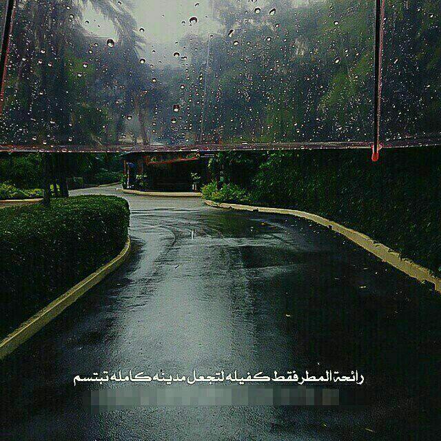 رائحة المطر Pictures Rain Words Quotes