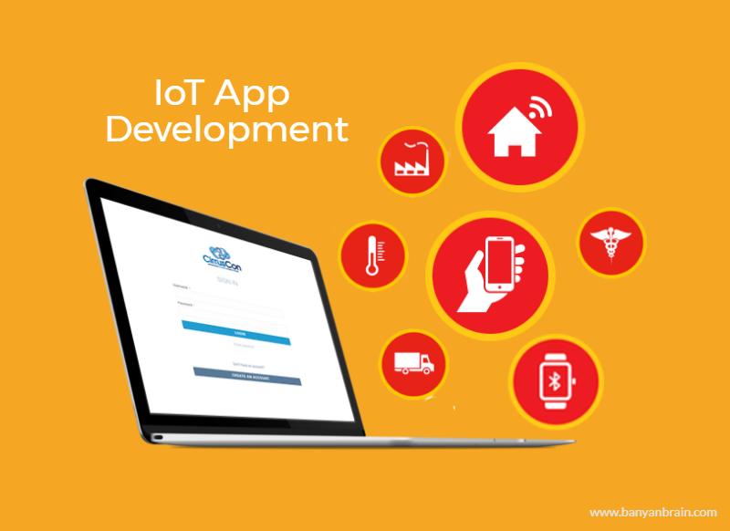 IoT Application Development in India & USA Development