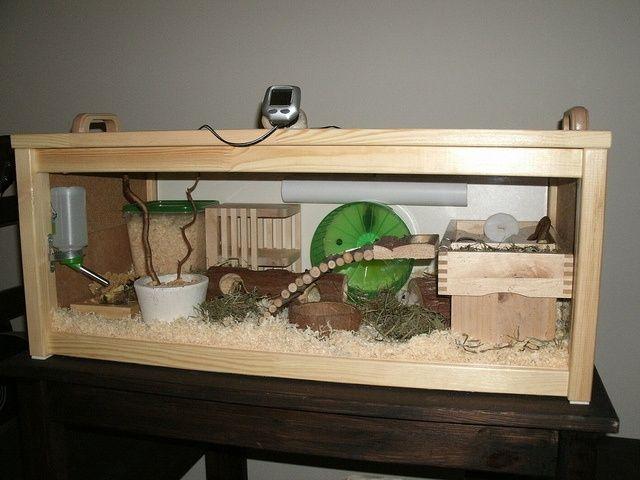 Diy Hamster Habitat Hamster Cages Dwarf Hamster Cages Hamster House