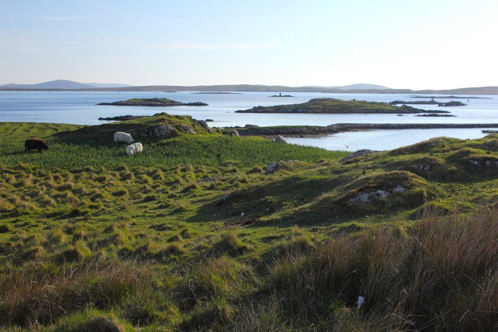 E trascorrere le vostre giornate rilassarci qui con il gregge. | 31 Urgent Reasons To Move To The Western Isles Of Scotland Right Now