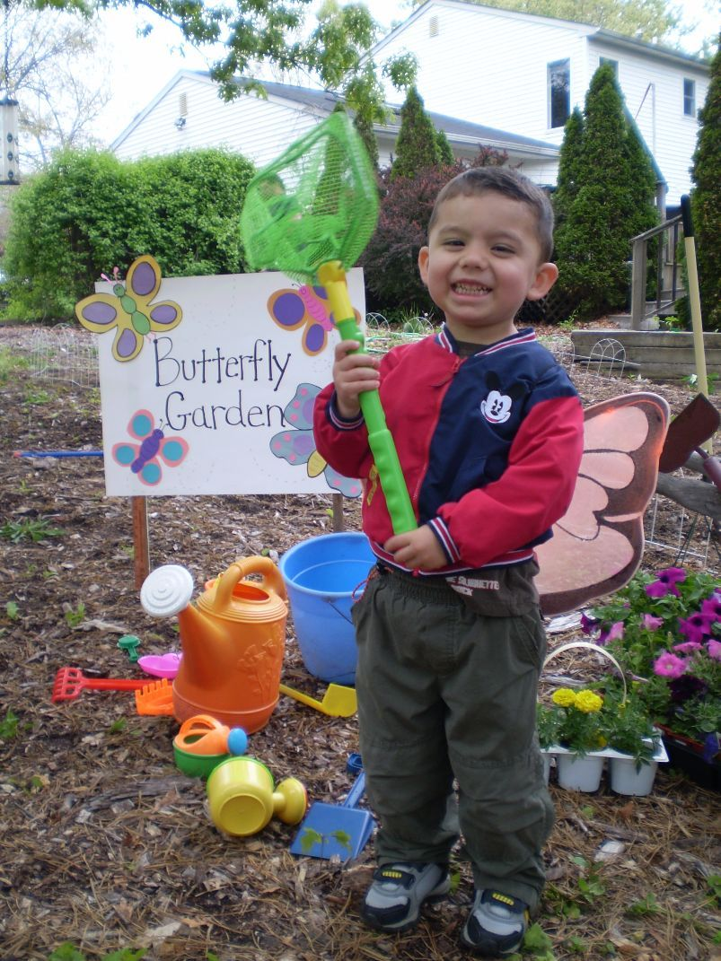 create your own butterfly garden with your kids