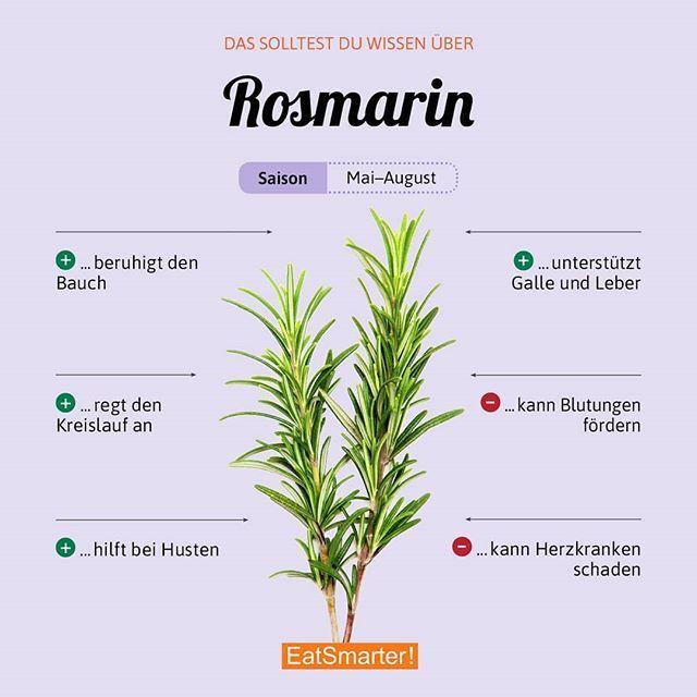 Eines der beliebtesten Kräuter. Wozu gibt es bei dir meistens Rosmarin? Klick dich durch unsere interaktive Infografik: eatsmarter.de/lexikon/warenkunde/kraeuter/rosmarin