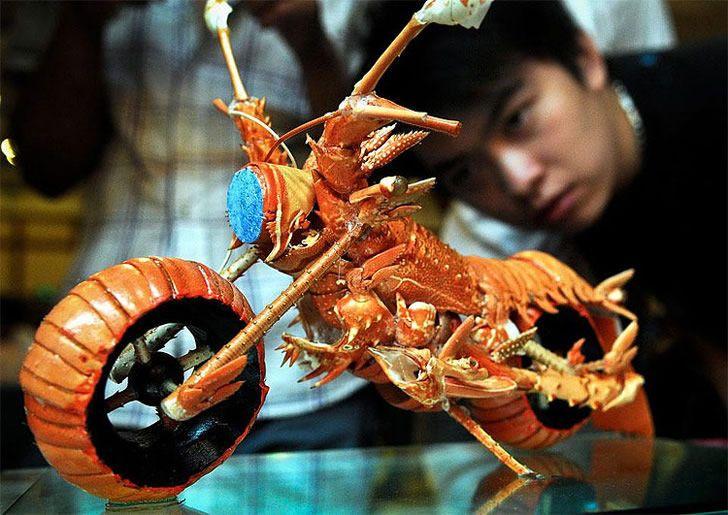 Bike, shrimp