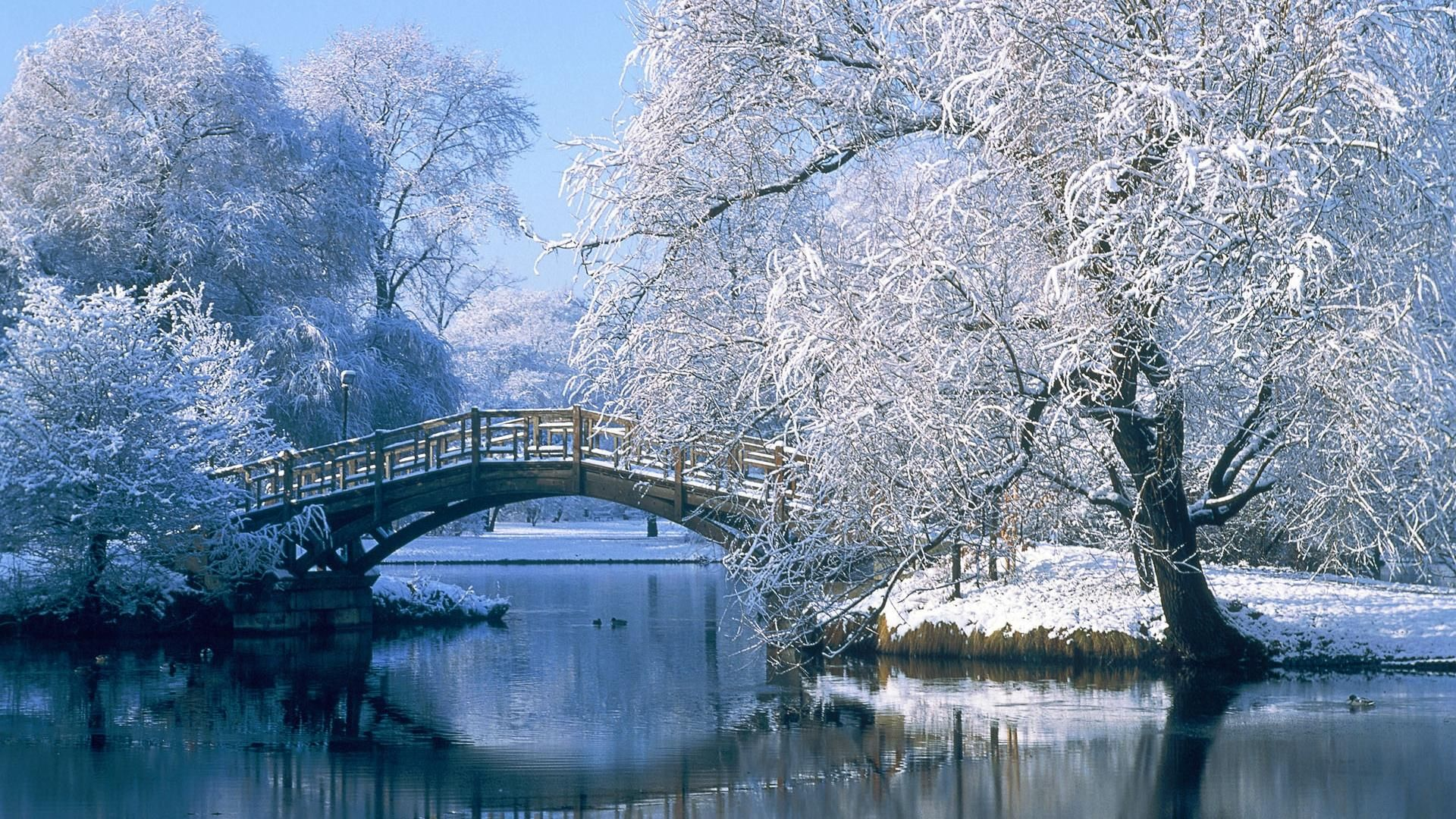 Hd image winter central park central parks for Central park wallpaper