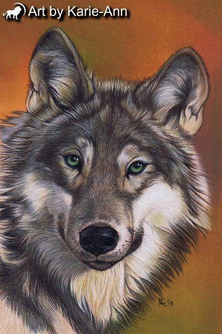 Wolf pastel painting Wolf Wildlife Art