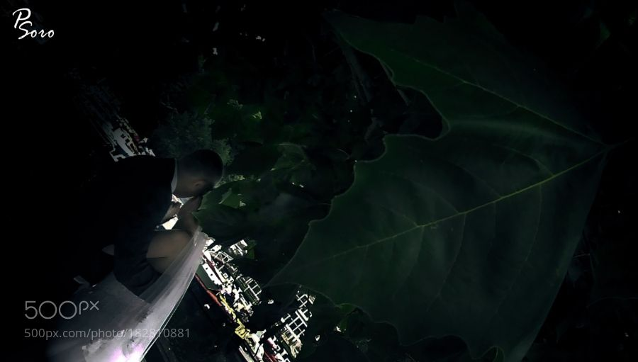 UNDER THE LEAF... by paulsoro