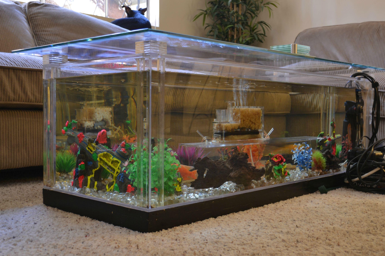 aquarium coffee table diy coffee tables in 2019 diy aquarium rh pinterest com