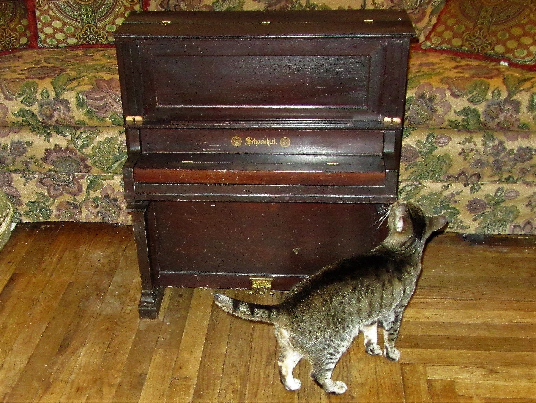Circa 1925 1933 Schoenhut Extra Fine Upright Piano With Three