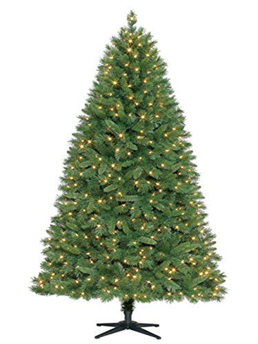 75ft prelit kennedy fir quick set tree clear lights click on the image for