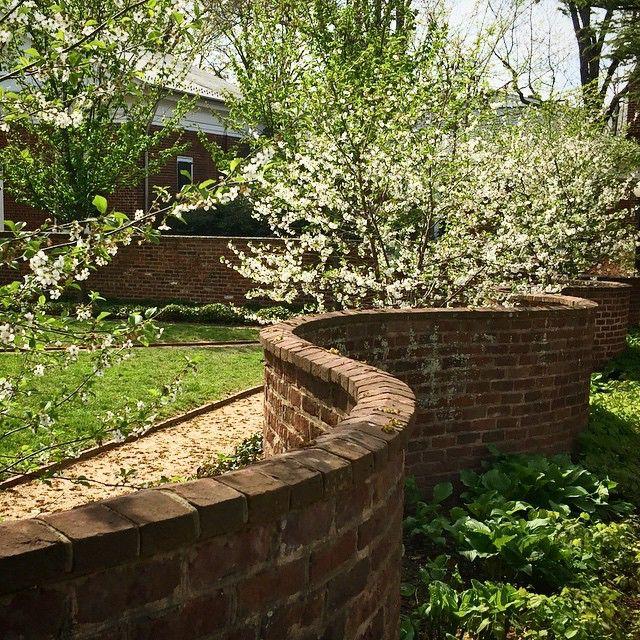 how much do we love the serpentine walls at #UVA? #onebrickthick #GardenWeek